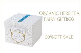 fairy_gift